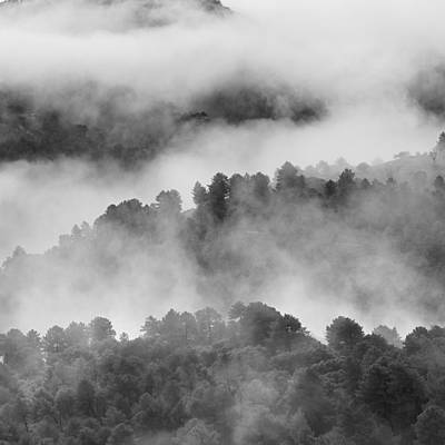 Foggy Morning Print by Guido Montanes Castillo