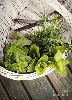 Fresh Herbs Print by Mythja  Photography