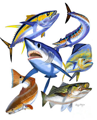 Gamefish Collage Print by Carey Chen