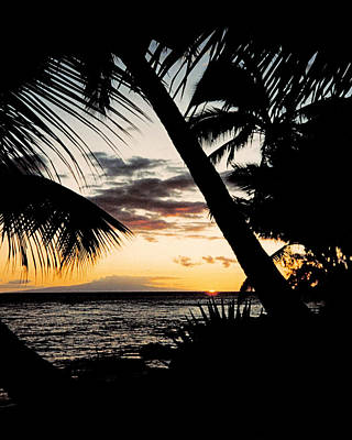 Coconut Photograph - Maui Sunset by J D Owen