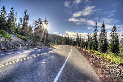 Forest Photograph - Mount Bachelor by Twenty Two North Photography