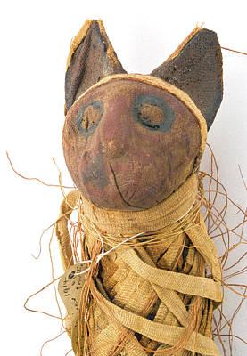 Mummified Cat Print by Natural History Museum, London