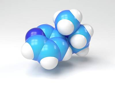 Nicotine Molecule Print by Indigo Molecular Images