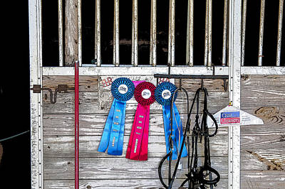 Eventing Photograph - 3 Ribbons Today by Rich Franco