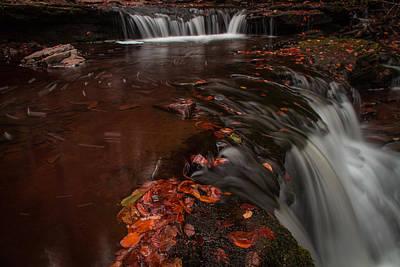 Photograph - Ricketts Glen by Jahred Allen