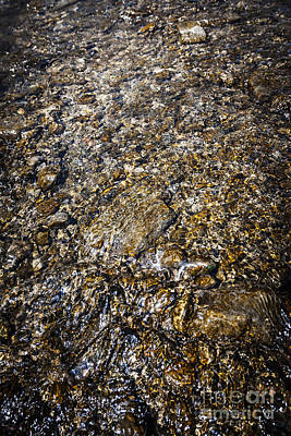 Submerge Photograph - Rocks In Water by Elena Elisseeva