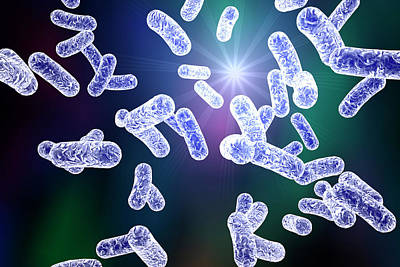 Rod-shaped Bacteria Print by Kateryna Kon