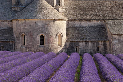 Rows Of Lavender Leading To Abbaye De Print by Brian Jannsen