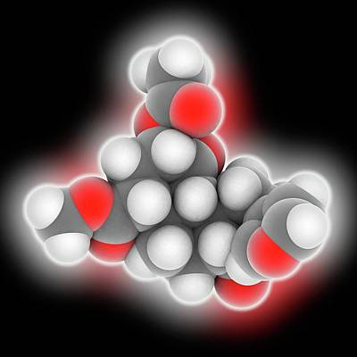 Occur Photograph - Salvinorin A Drug Molecule by Laguna Design