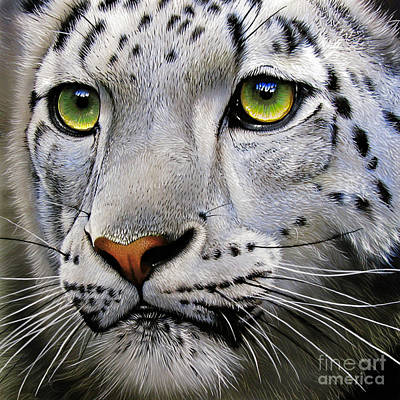 Leopard Painting - Snow Leopard by Jurek Zamoyski