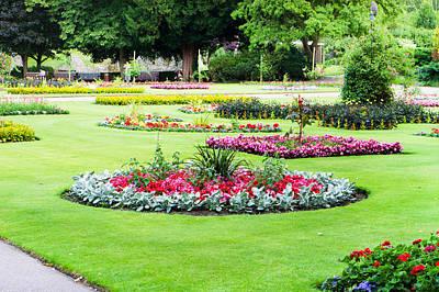 Begonia Garden Photograph - Summer Garden by Tom Gowanlock