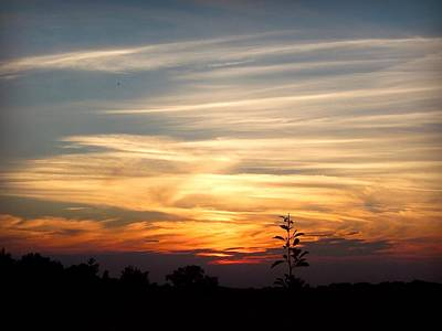 Red Photograph - Sunset Sky By Artist Nature by Lilia D