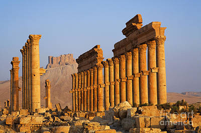 Palmyra Photograph - The Colonnaded Street And The Arab Castle Palmyra by Robert Preston