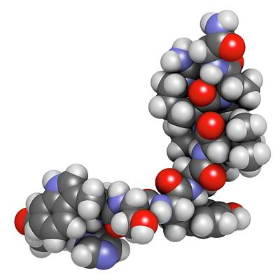 Triptorelin Drug Molecule Print by Molekuul