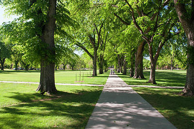 Fort Collins Photograph - Usa, Co, Fort Collins by Trish Drury
