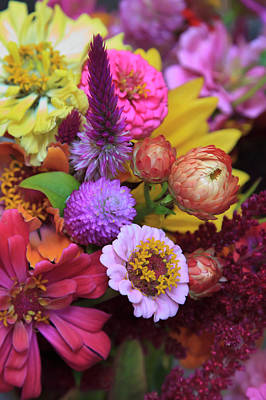 Property Released Photograph - Usa, Georgia, Savannah, Bouquet by Joanne Wells