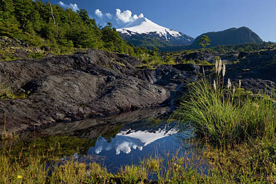 Villarrica National Park, Chile Print by Scott T. Smith
