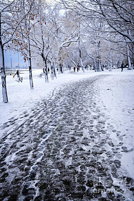 Footprints Photograph - Winter Park by Elena Elisseeva