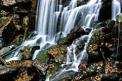 Wolf Creek Photograph - Wolf Creek Falls by Thomas R Fletcher