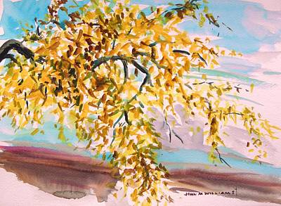 Simplicity Drawing - Yellow Maple by John Williams