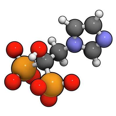 Zoledronic Acid Osteoporosis Drug Print by Molekuul