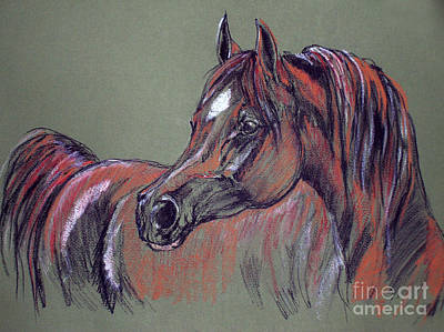 Arabian Horse  Print by Angel  Tarantella