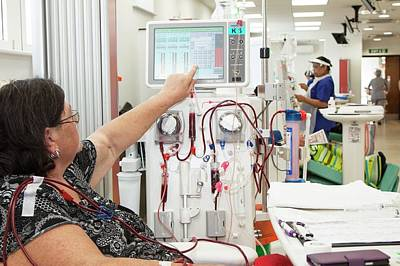 Shared Care Dialysis Unit Print by Life In View