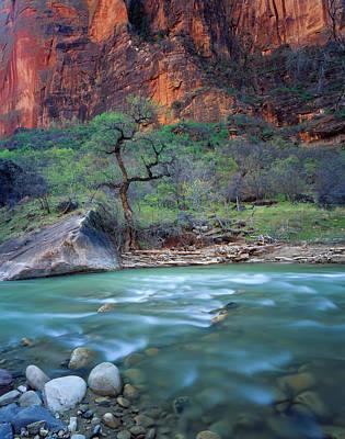 Unspoiled Art Photograph - Zion National Park, Utah by Scott T. Smith