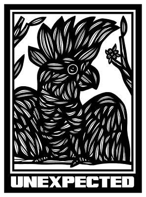 Cockatoo Drawing - Prawl Cockatoo Parrot Black And White by Eddie Alfaro