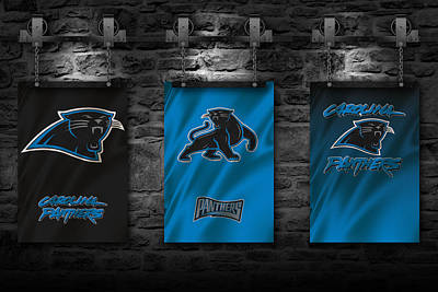 Flags Photograph - Carolina Panthers by Joe Hamilton