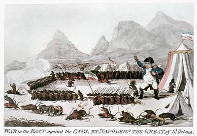 Cat Cartoon Painting - Napoleon Bonaparte (1769-1821) by Granger