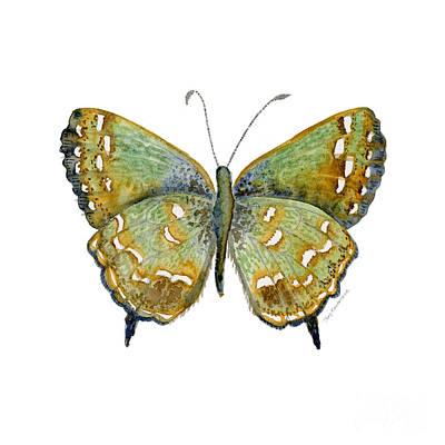 38 Hesseli Butterfly Print by Amy Kirkpatrick