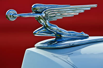 Hoodie Photograph - 1936 Packard Hood Ornament by Jill Reger