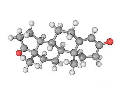 Androstenedione Hormone Molecule Print by Laguna Design