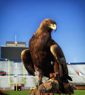 Turf Photograph - Auburn War Eagle by Mountain Dreams