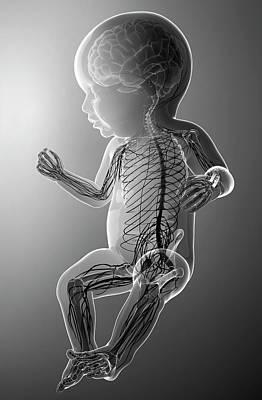 Baby's Nervous System Print by Pixologicstudio