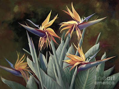 4 Birds Of Paradise Print by Laurie Hein