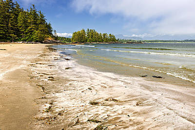 Vancouver Photograph - Coast Of Pacific Ocean On Vancouver Island by Elena Elisseeva