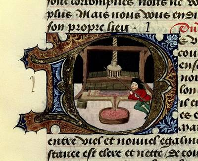 Must Art Photograph - Firenze, Aldebrando Da 14th Century by Everett