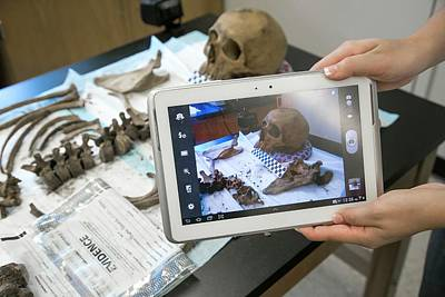 Forensic Scientist Identifying Remains Print by Jim West