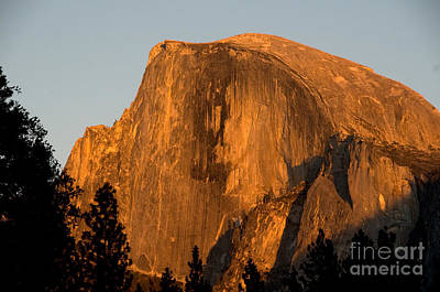 Half Dome, Yosemite Np Print by Mark Newman