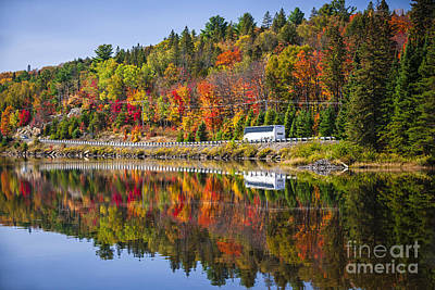 Canada Photograph - Highway Through Fall Forest by Elena Elisseeva