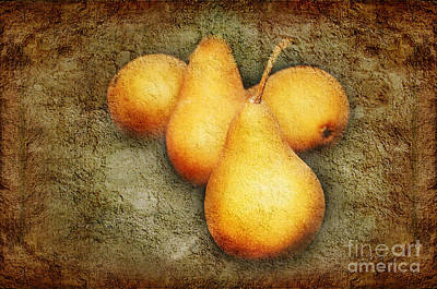 Fresh And Delicious Photograph - 4 Little Pears Are We by Andee Design