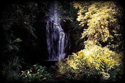 Gold Photograph - Maui Waterfall by J D Owen