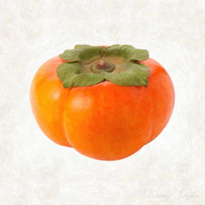 Persimmon Print by Danny Smythe