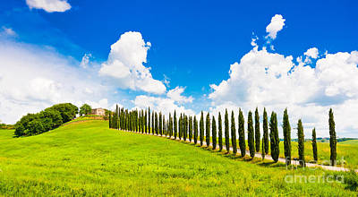 Scenic Tuscany Print by JR Photography