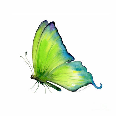 Lime Painting - 4 Skip Green Butterfly by Amy Kirkpatrick