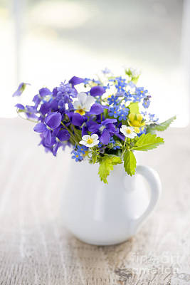 Pansy Photograph - Wildflower Bouquet by Elena Elisseeva