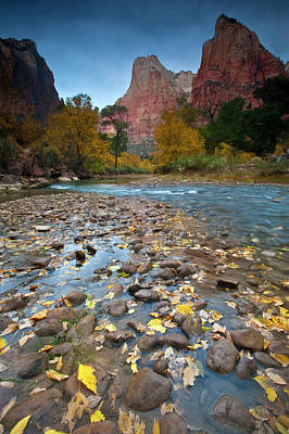 Zion National Park Photograph - Usa, Utah, Zion National Park by Jaynes Gallery