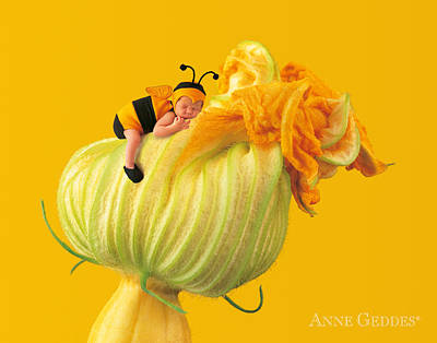 Fine Art Flower Photograph - Untitled by Anne Geddes